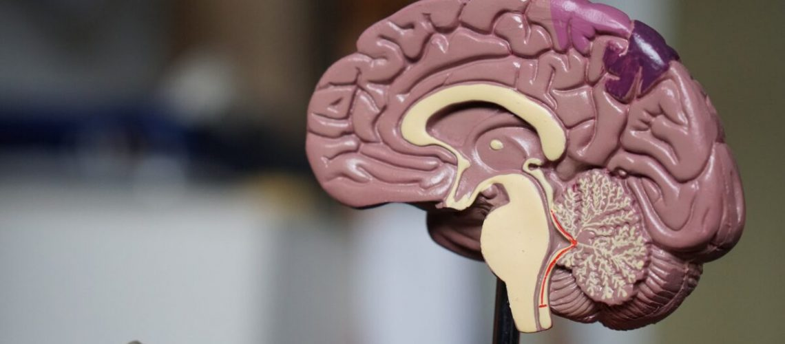 Effects of Drug Use on the Brain
